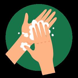 Lave o dorso de cada mão